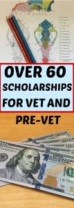 Veterinary School Scholarships listed in this article.