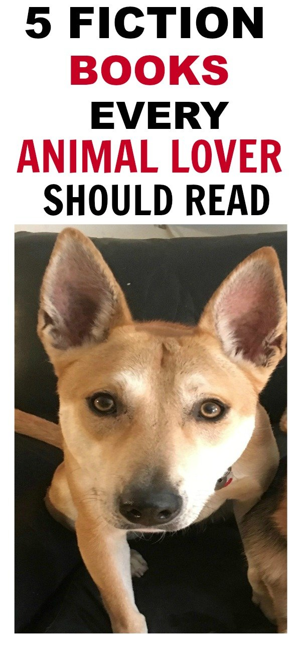 5 of the best fictional books for animal lovers, Veterinary students, vet techs, or just anyone who wants to feel something real. #books #vetstudent #animallover #vettech #college #dogs #parrots #veterinarian #empathy #empathyforanimals #animals #booksaboutanimals #fiction