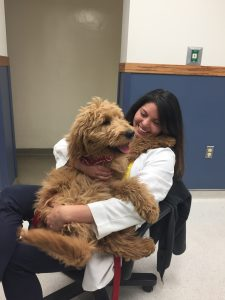 Ross University graduate Dr. Maresca and her goldendoodle Buckley