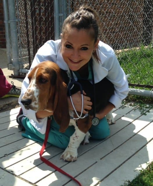 Ross vet school Dr. Bailey and a basset hound