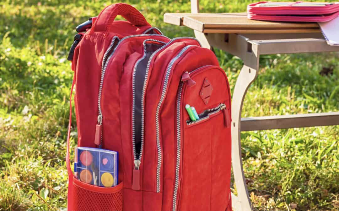 The 9 Best Rolling Backpack for School